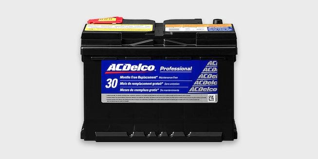 ACDelco Professional Series Batteries