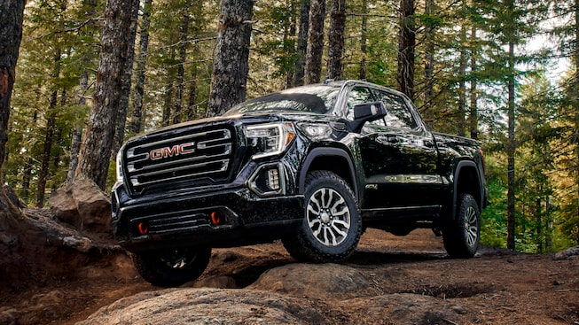 2020 Sierra AT4 Off Road Truck: standing in the woods front view